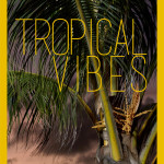 Tropical Vibes – fashion editorial by My White Box